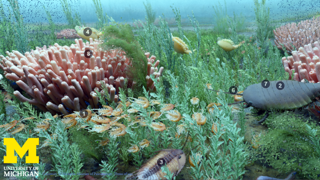 still image from Cambrian diorama