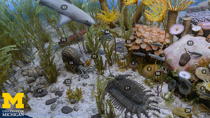 still image from Devonian Diorama