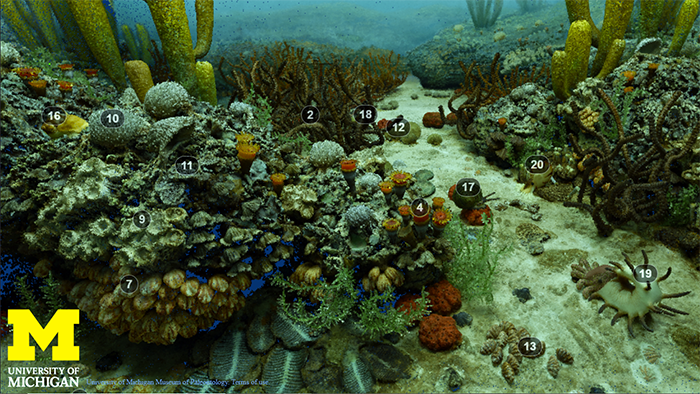 still image from the Permian Ocean Diorama